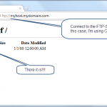 Using your ftp-client, connect to the FTP-Server and see the virtualized folder!